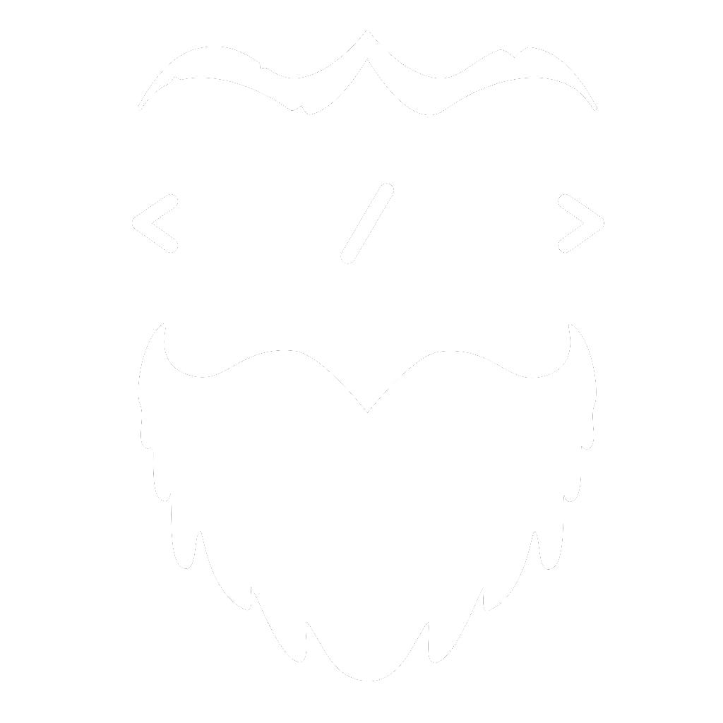 Logo Devster